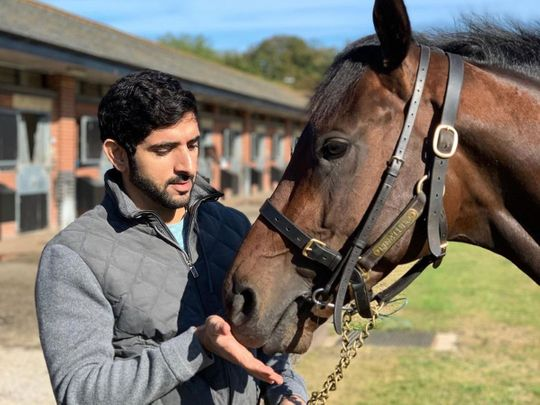 In photos: All the times Sheikh Hamdan showed us his animal friends