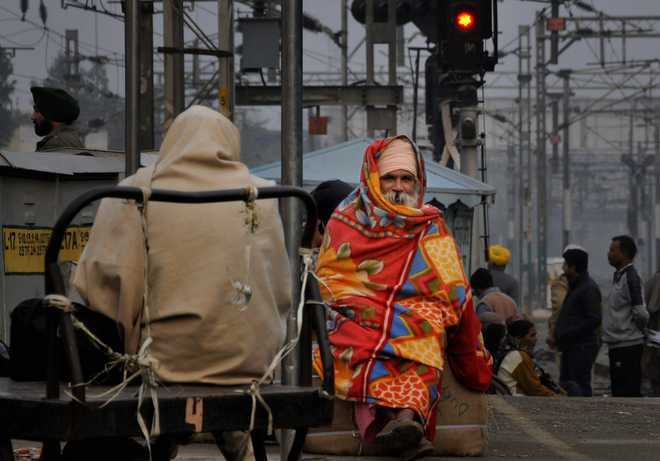 Intense cold wave sweeps Punjab, Haryana as dense fog blankets north