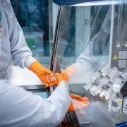 'It's the greatest scientific achievement of my lifetime' says Professor BRENDAN WREN