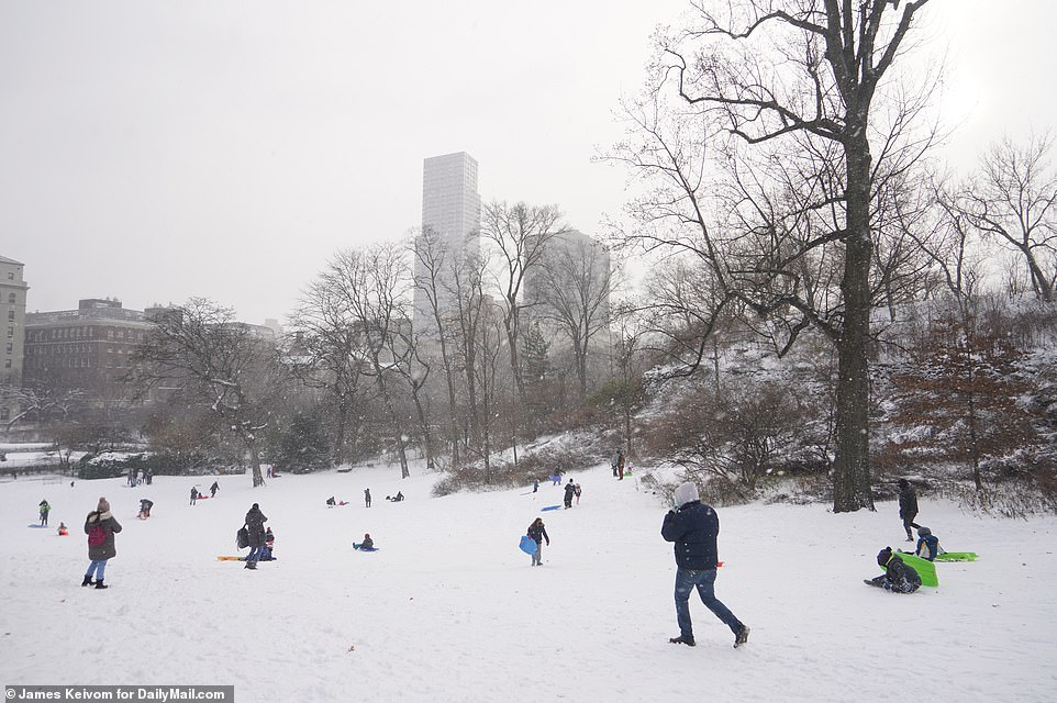 New Yorkers don skis and grab sledges to glide through Central Park on snow left by Storm Gail