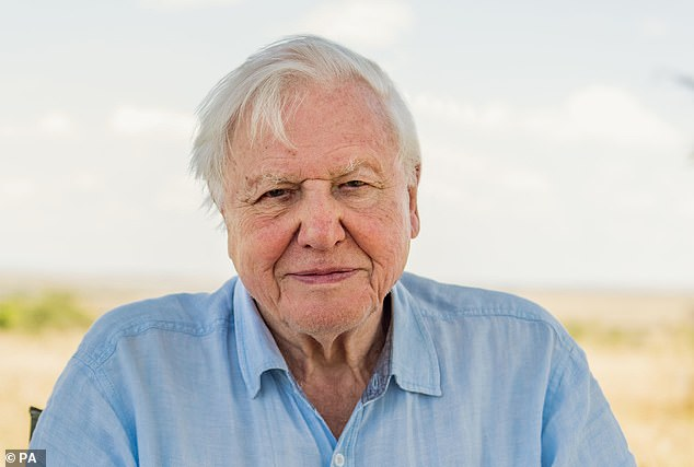 Sir David Attenborough welcomes Joe Biden's US presidential election victory
