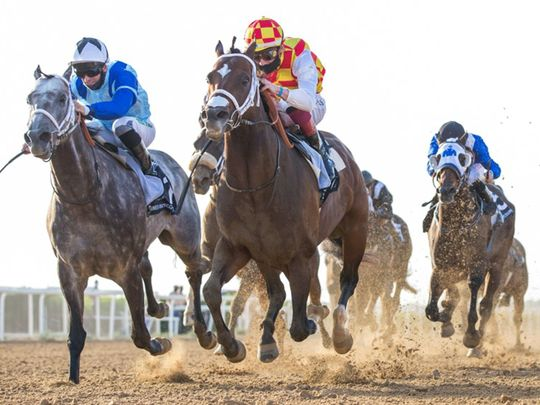 Sprinters set to star in Sheikh Mansoor Cup at Sharjah