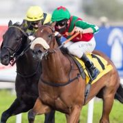 Sprinters to tackle Jebel Ali hill on Friday