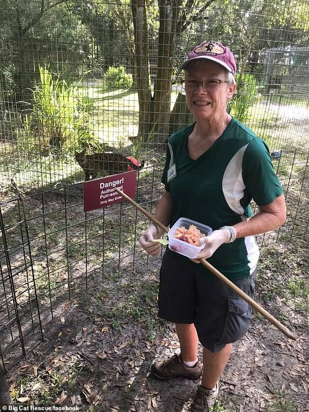 Volunteer Candy Couser has been rushed to hospital after being bitten by a male tiger at Carole Baskin's Big Cat Rescue park in Tampa, Florida on Thursday morning