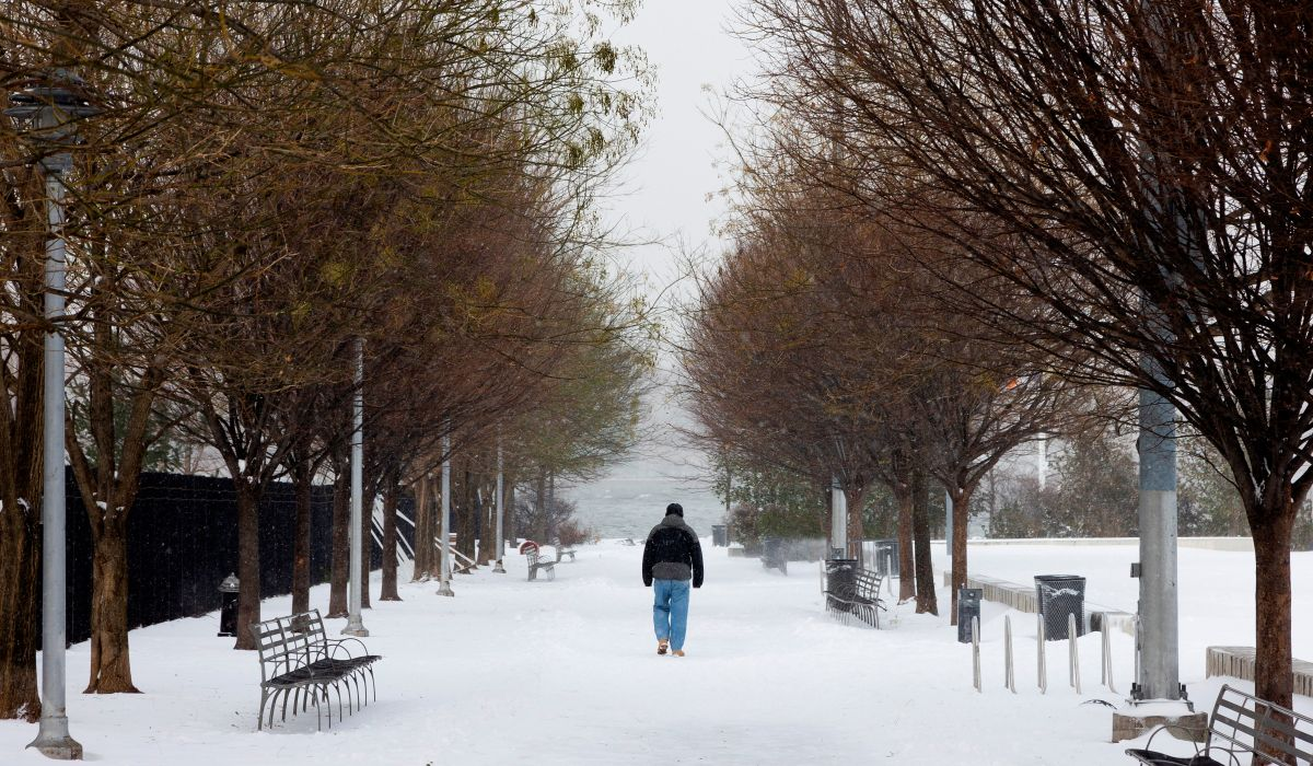 Users Flood Facebook and Twitter with Photos and Videos of Powerful Snowstorm in Northeast US | The State