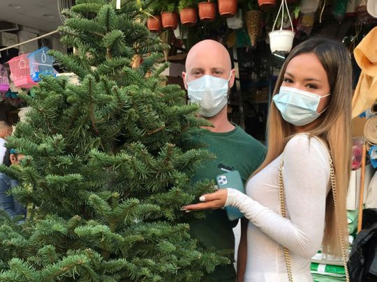 Watch: COVID-19 fails to dampen festive cheer  as sale of real Christmas trees in Dubai soars