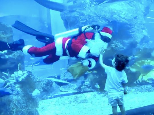 Watch: Santa Claus spotted with sharks and stingrays in Dubai Aquarium