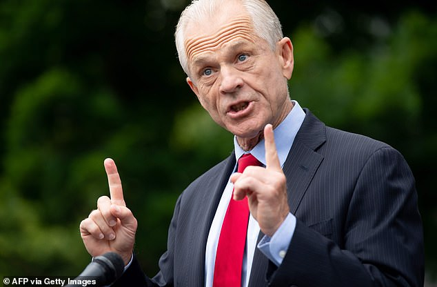 'We're not going there, dude': Trade advisor Peter Navarro produces his own election 'fraud' report