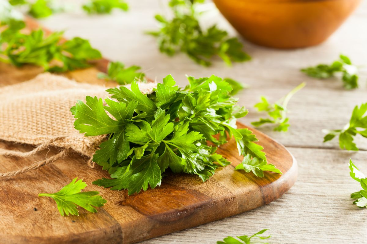 What a cup of parsley tea can do for your health   The State