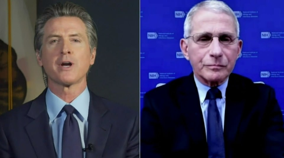Governor Gavin Newsom (left) announced California's first case of the strain on Wednesday during a virtual conversation with Dr Anthony Fauci (right)