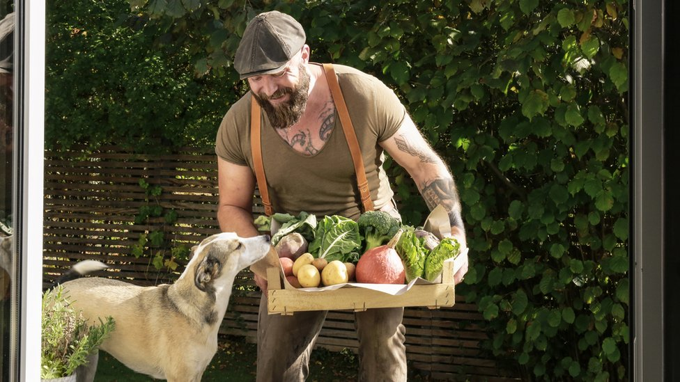 Man with vegetables and dog