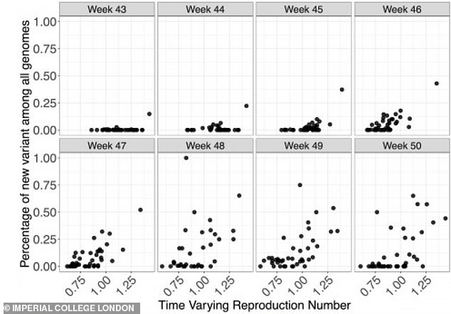 Graphs from the new study show how, over eight weeks, the new variant became increasingly common (dots higher on each chart) in the UK and became more transmissible (dots further the right on each chart show rising R numbers, or transmission rates