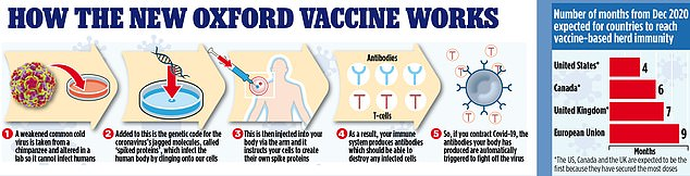 A graphic demonstrates how exactly the new Oxford/AstraZeneca Covid vaccine works