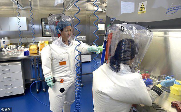 He claimed the pathogen may have escaped through a 'leak or an accident', adding: 'Even establishment figures in Beijing have openly dismissed the wet market story'. Pictured: Chinese virologist Shi Zhengli, who was dubbed 'Batwoman', at the Wuhan lab with a colleague