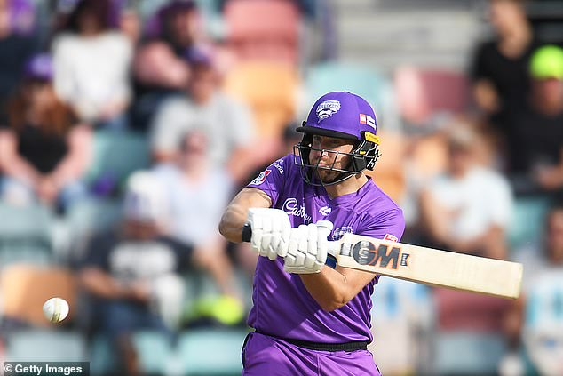 Top Twenty20 batsman, Englishman Dawid Malan in full flight at the BBL in Hobart on Saturday. It was Malan who whacked the miracle six that ended up in a man's beer cup
