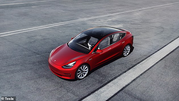 Tesla introduced its FSD technology in beta in October and has allowed select users to test it out (stock photo)