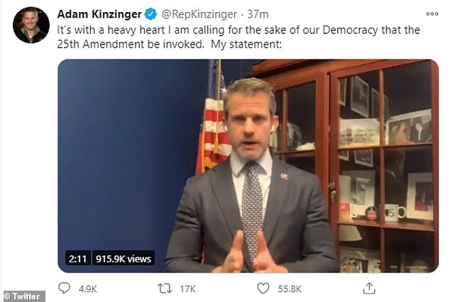 Republican congressman Adam Kinzinger demanded Mike Pence and the Cabinet remove Donald Trump by invoking the 25th Amendment immediately. He posted a video to Twitter in which he said he is calling for Donald Trump to be removed from office 'for the sake of our Democracy'