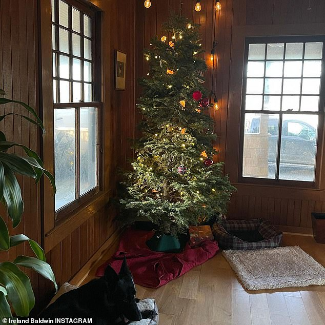 No rush: The model finished off her post by revealing that her Christmas tree was still up back at home