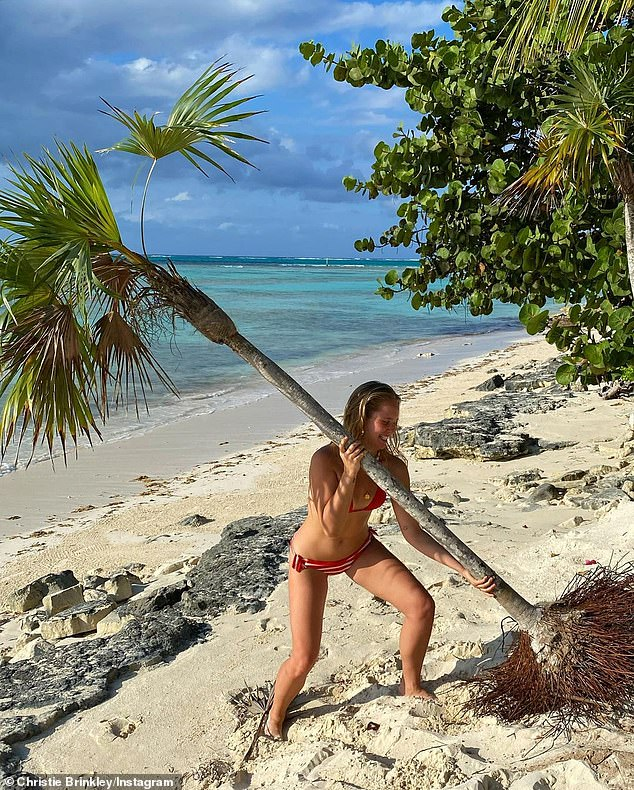 Making it happen: The star laughed as she tried her best to get the tree in the sand