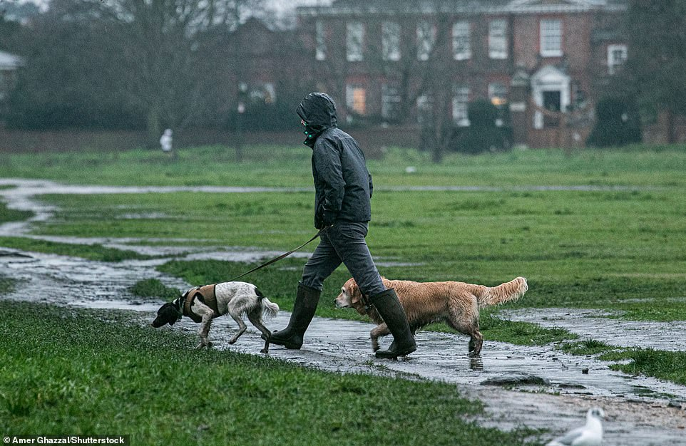 A dog walker braved the wet weather on Wimbledon common this morning. While snow coated parts of Hertfordshire and north London, other areas of the capital only saw rain