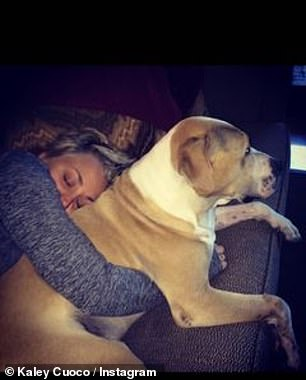True love: The Flight Attendant star shares numerous photos of her cuddling with Norman