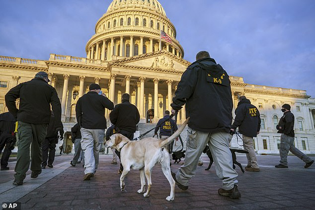 Blunt said small fixes, like repainting, had to take place to get the building ready for inauguration after the riots. Federal K-9 units sweep the building Tuesday before the ceremonies at the Capitol Wednesday