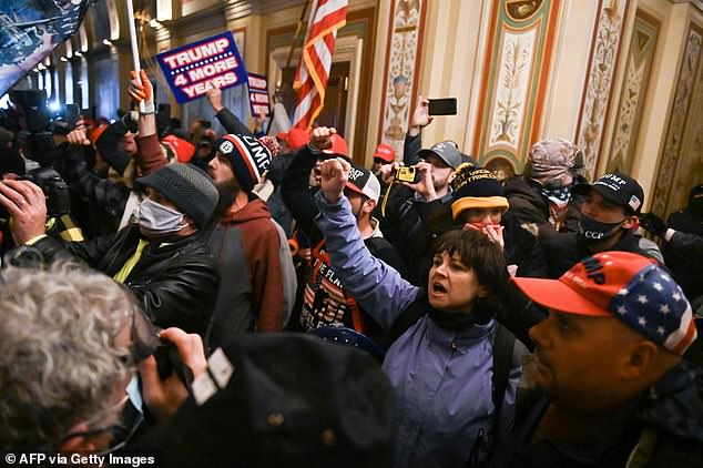Ianni (raising her right fist) and Sahady (wearing the baseball cap) are seen bottom right next to each other inside the United States Capitol during the MAGA riot on January 6