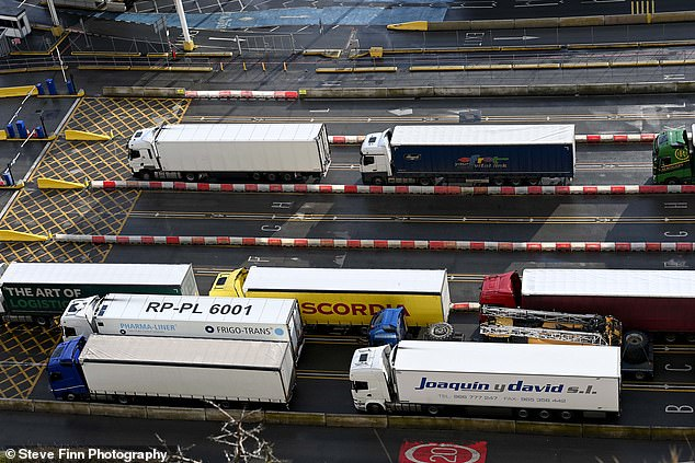 Lorry drivers have reportedly been warned that tailbacks at ports could get worse in the coming days as traffic returns to normal levels