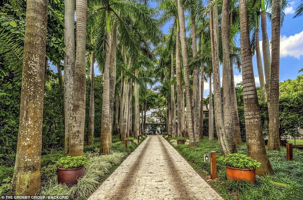 Despite agreeing to a record $47m divorce settlement they surprised the world in 2016 when they announced they were back together and living in the Miami home, which Collins purchased through an LLC. Pictured: Palm trees leading up to the property