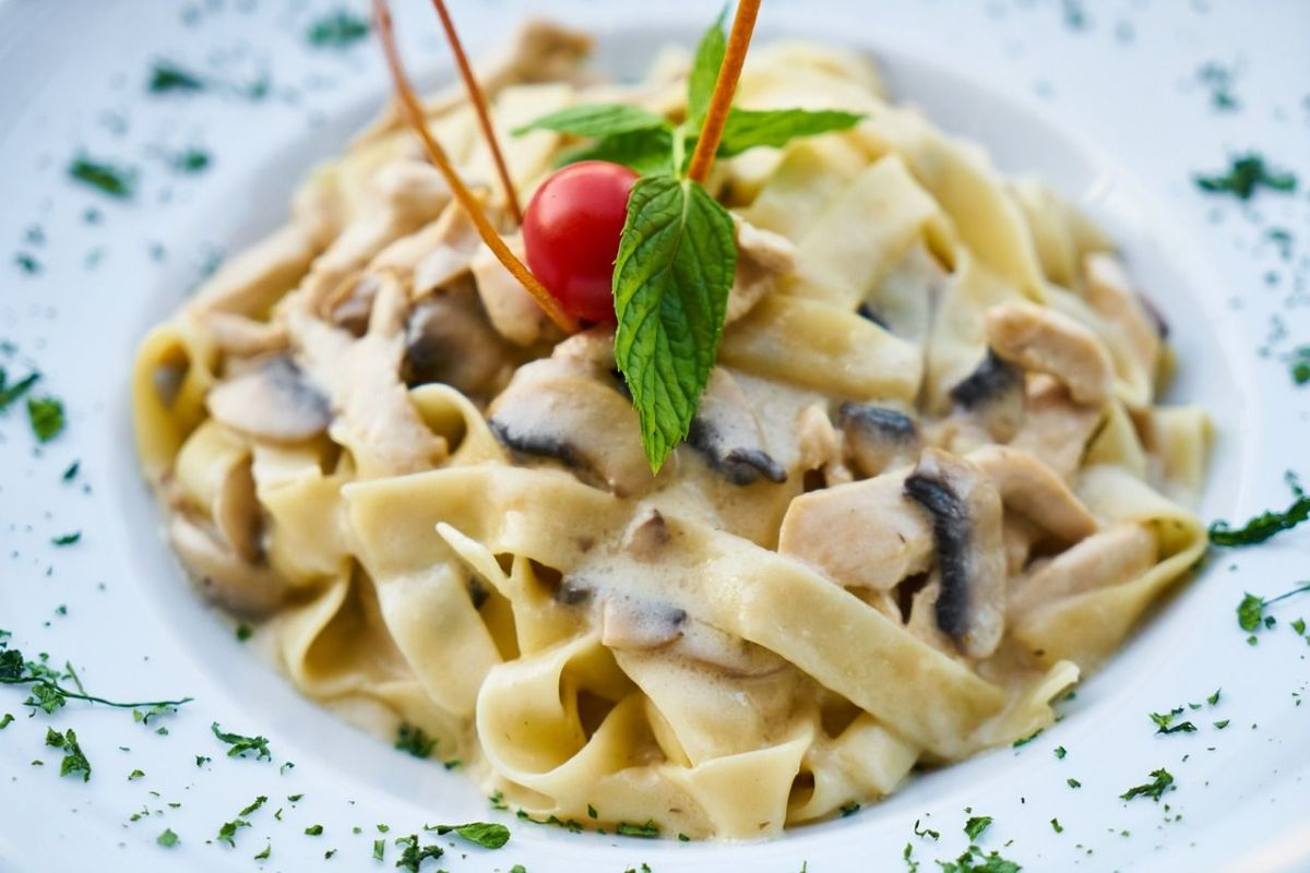 5 creamy pasta that you have ready in less than 30 minutes   The State