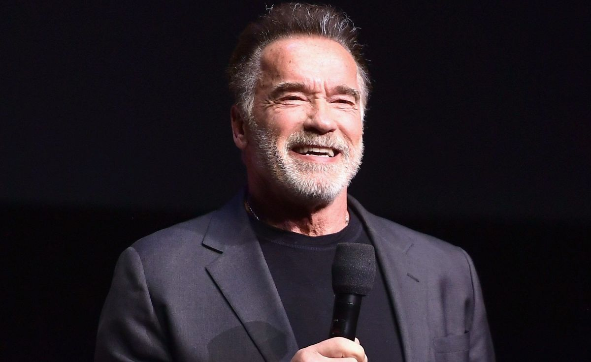 Arnold Schwarzenegger compares assault on the Capitol to the rise of the Nazis in Germany | The State