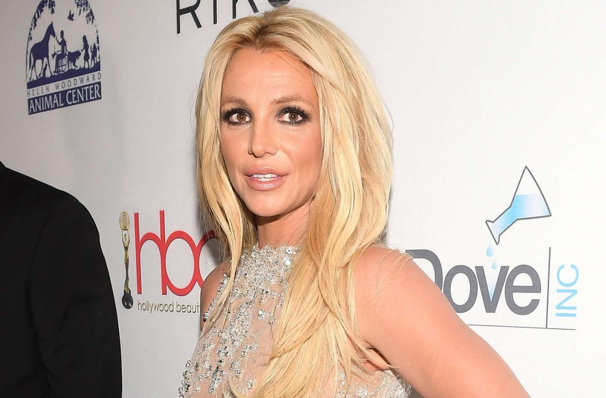 Britney Spears' Sister Jamie Points to 'Killing Cats' Car Brand Tesla | The State