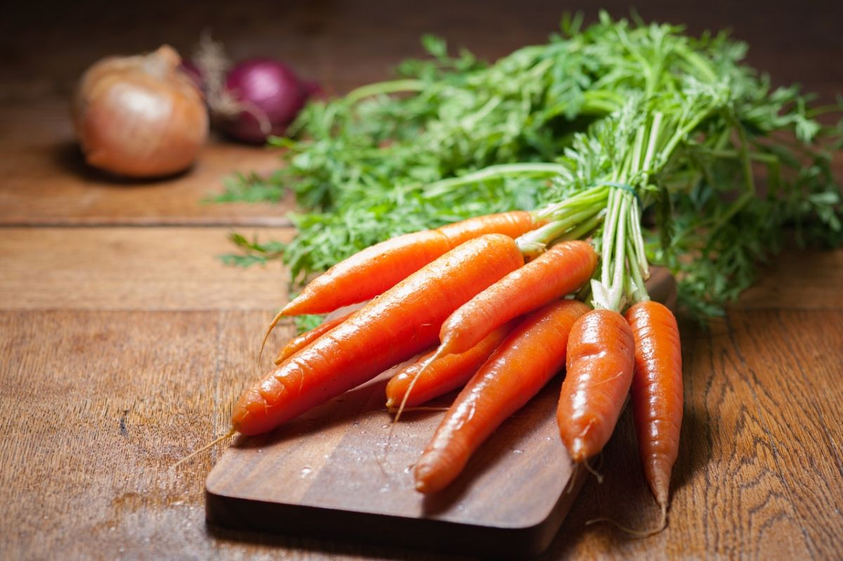 Crispy carrot sticks: the best snack to include in your diet | The State