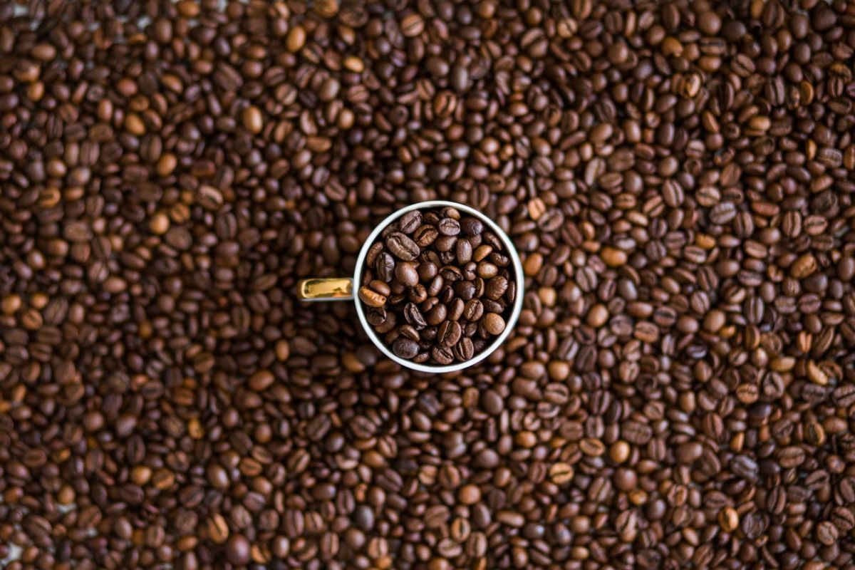 Does caffeine do to your body | The State
