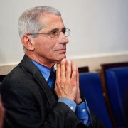 Fauci assures that vaccination will accelerate in the coming days in the United States | The State