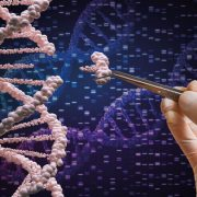 G42 Healthcare successfully completes genomics study in UAE to identify COVID-19 virus sequence