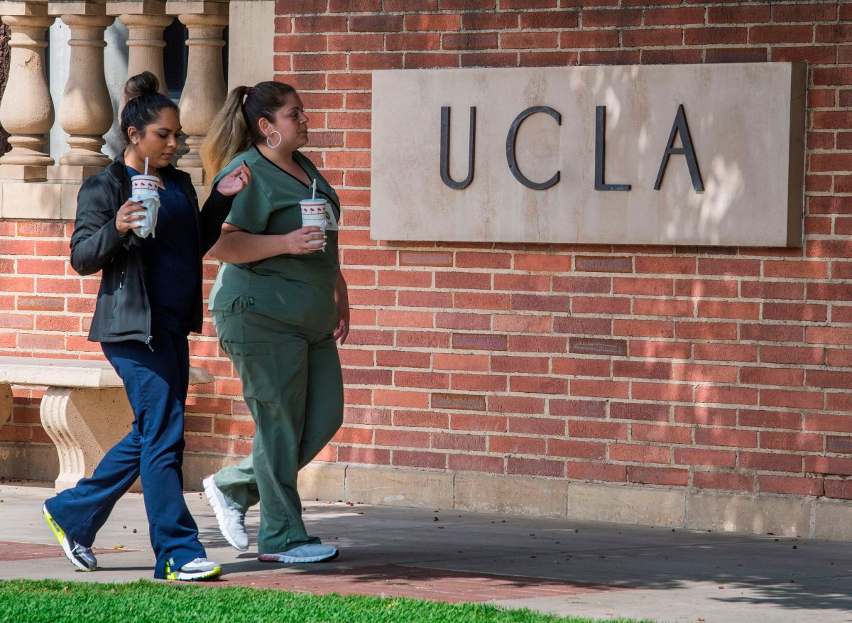 Latinos break the record for applications to the University of California and are the most applicants | The State