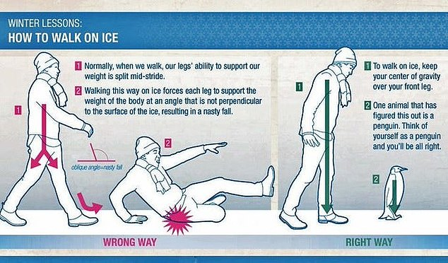 NHS trusts in Scotland urge people to 'walk like penguins' to prevent falls in the snow