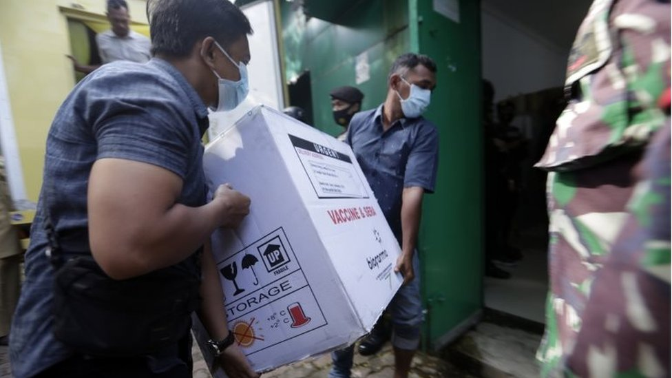 Workers carry covid-19 vaccines in Indonesia
