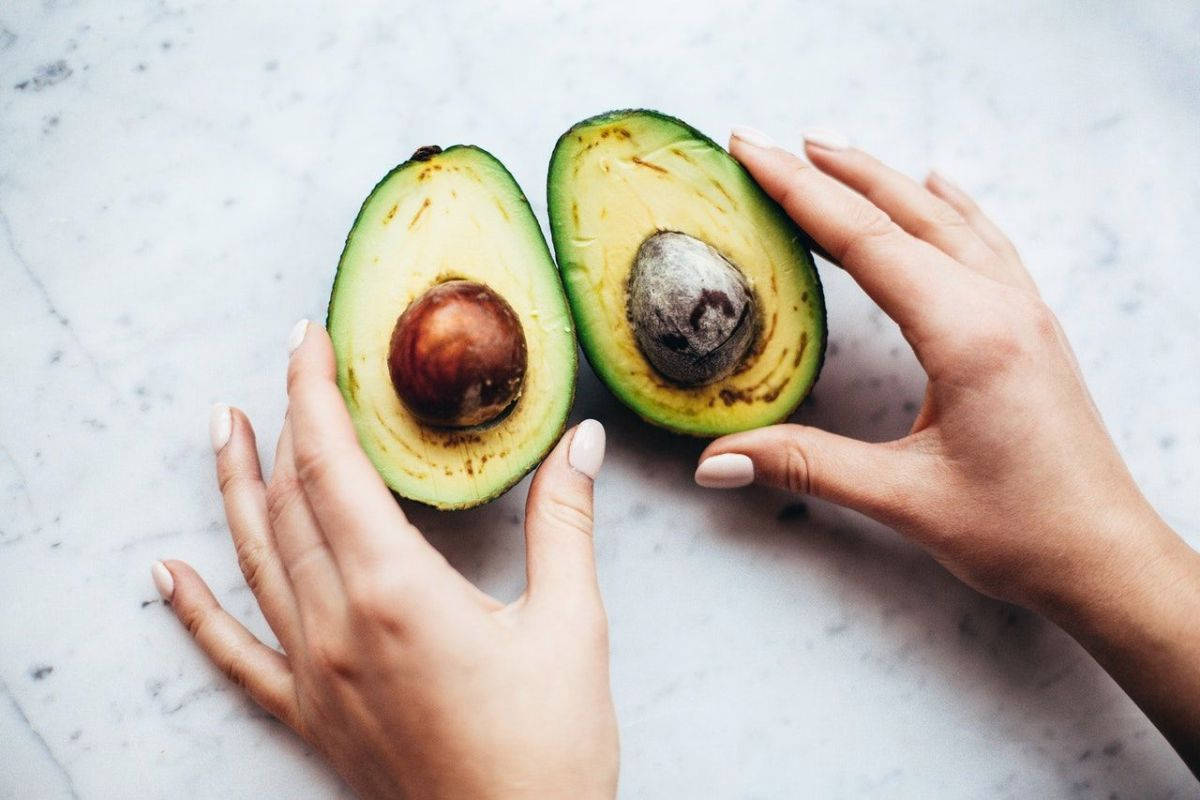 Why Avocado Imports From Mexico To The United States Shone During The Pandemic   The State