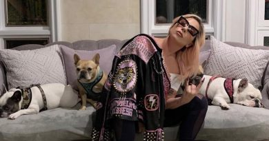 Lady Gaga's French Bulldogs Returned AfterTerrifying Dognapping & Shooting