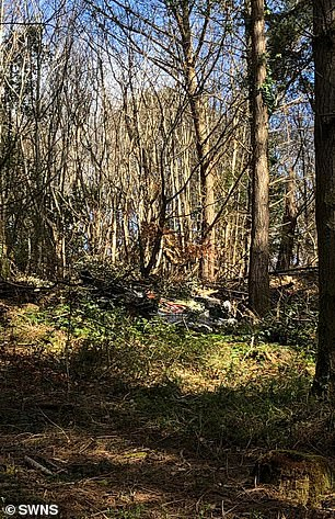 Debris was strewn across a wooded area in the aftermath of the crash