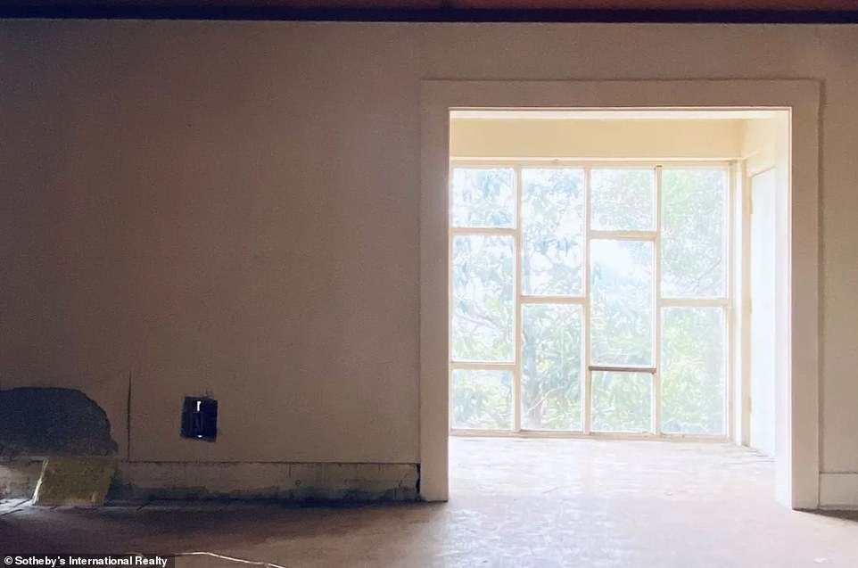 Natural light: There doesn't appear to be any shortage of natural lights and windows